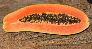 papaya-74585_640